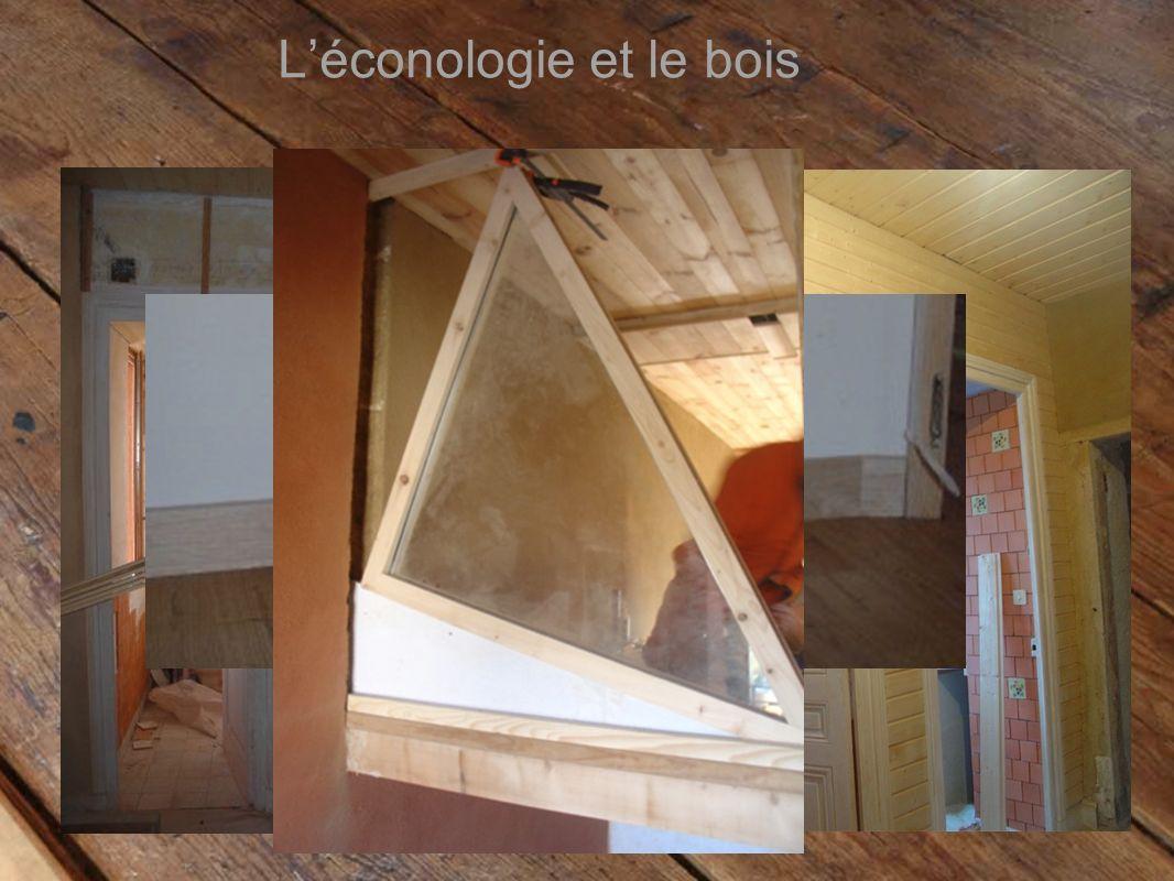 Léconologie et le bois