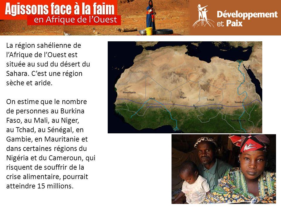 La région sahélienne de lAfrique de lOuest est située au sud du désert du Sahara.