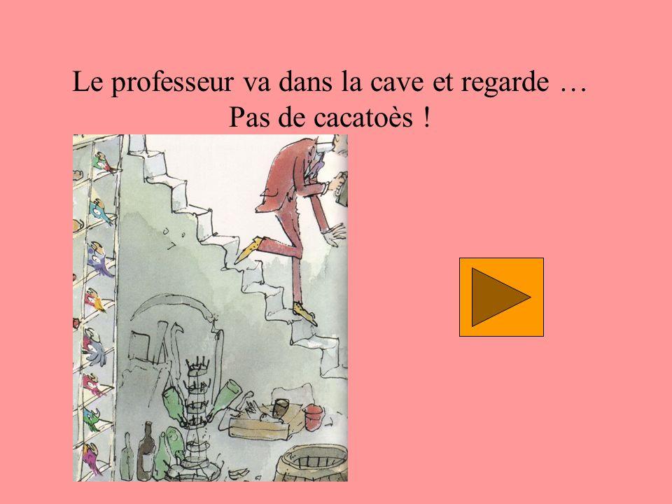 Le professeur va dans la cave et regarde … Pas de cacatoès !