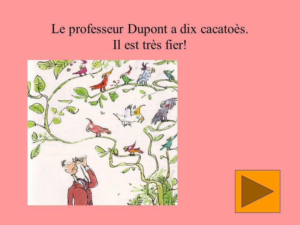 Le professeur Dupont a dix cacatoès. Il est très fier!