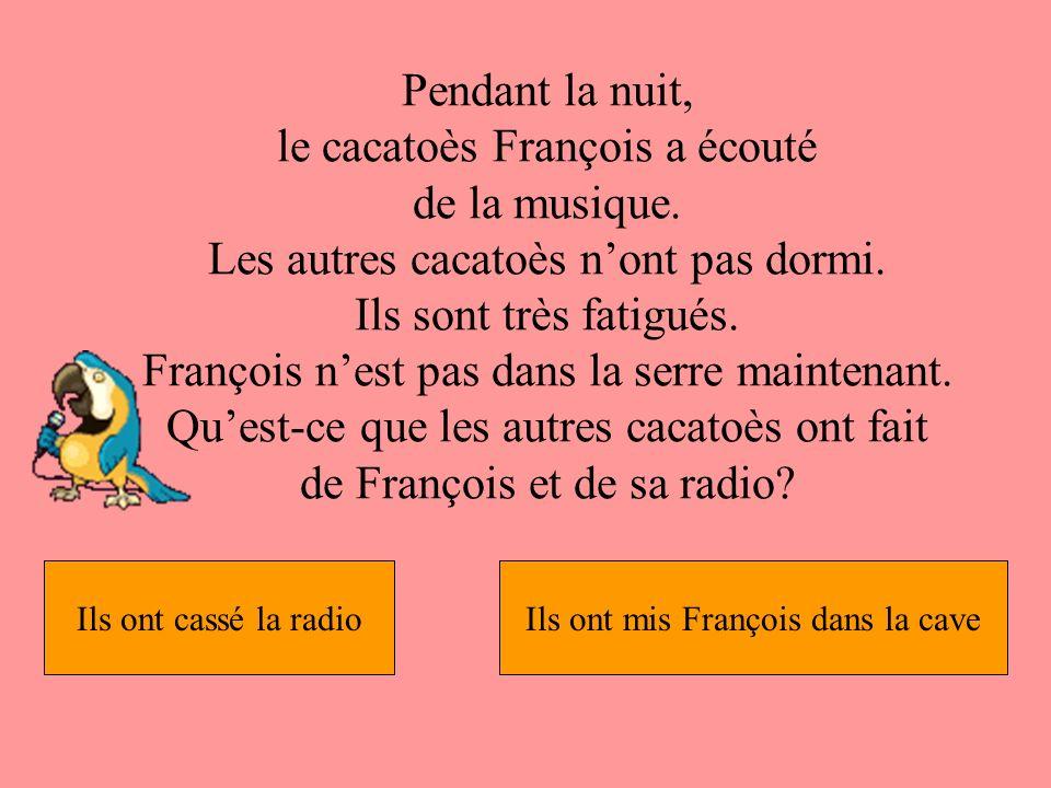 Pendant la nuit, le cacatoès François a écouté de la musique.