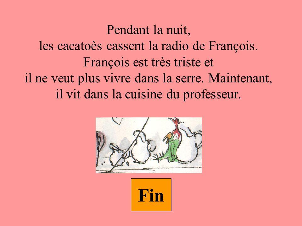 Pendant la nuit, les cacatoès cassent la radio de François.