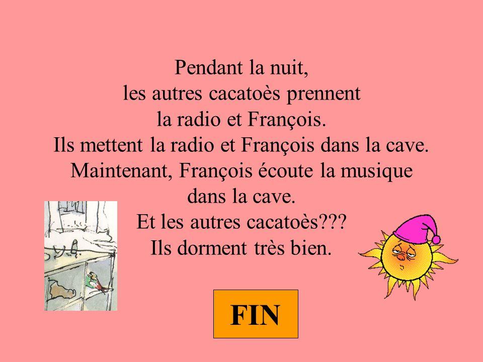 Pendant la nuit, les autres cacatoès prennent la radio et François.