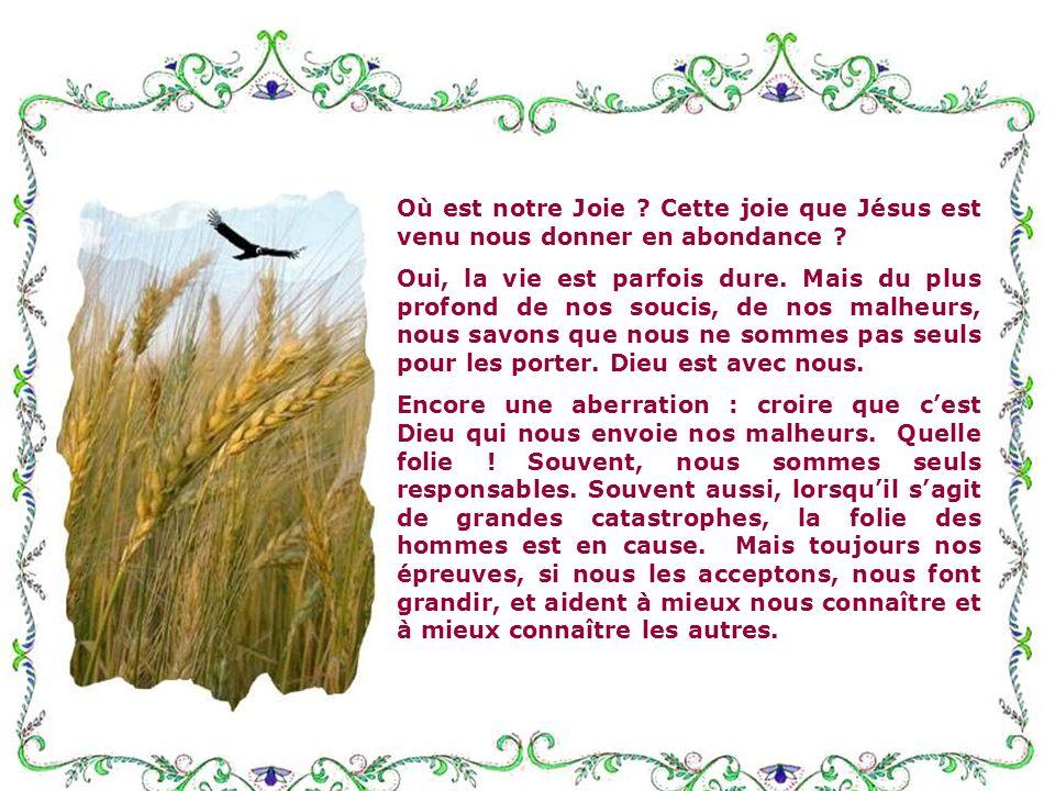 Et la troisième remarque, que faut-il en penser ? Dieu est pure Joie, et nous a insufflé sa joie ! Je me demande souvent ce que nous en faisons ! Avez