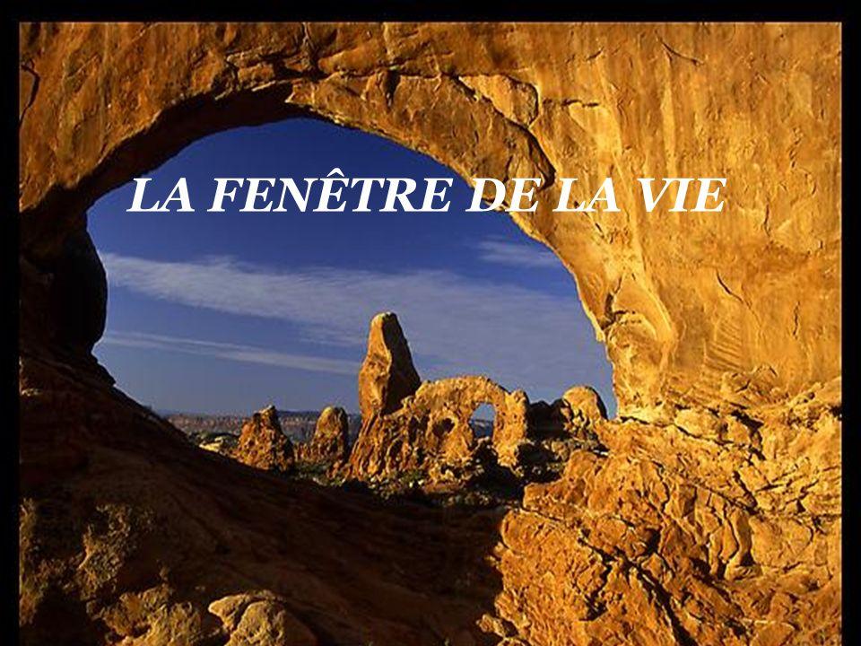 CRÉATION LE BER YVETTE Mars 2010 rene202@sympatico.ca Tiré du livre « Le petit sage » (paroles pour sépanouir) Auteur : François Gervais Musique : Imagination Gracieuseté de mon ami Georges Tremblay