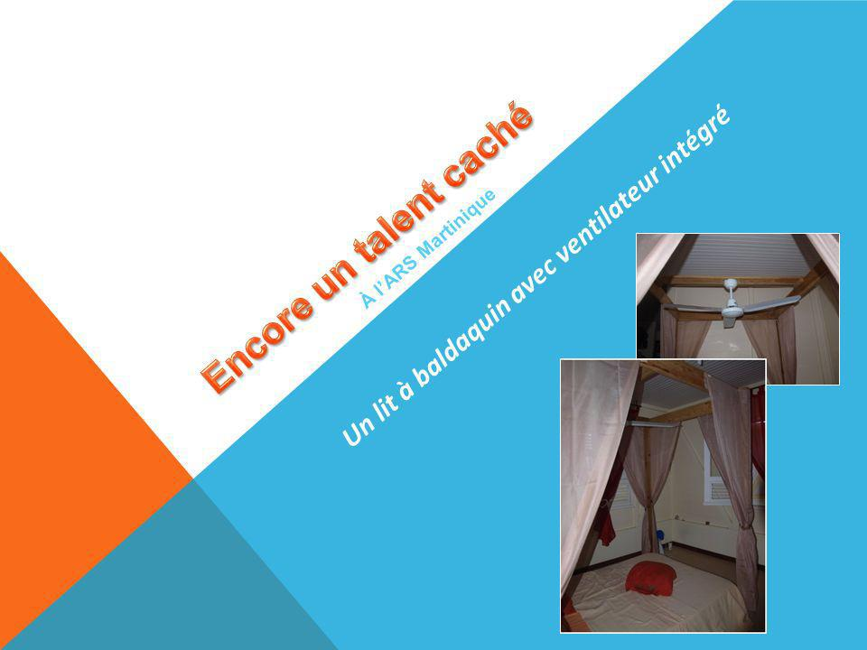À lARS Martinique Un lit à baldaquin avec ventilateur intégré