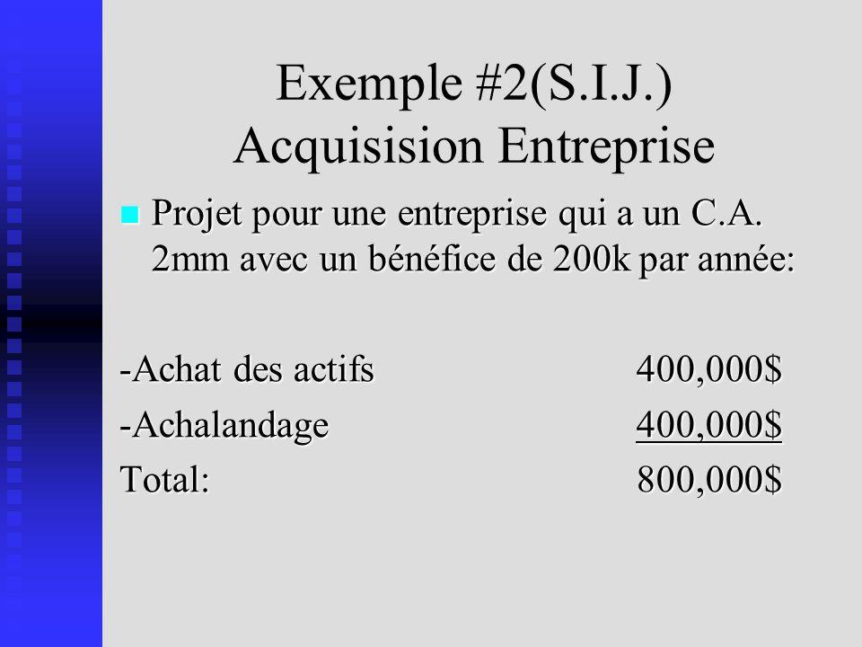 Exemple #2(S.I.J.) Acquisision Entreprise Projet pour une entreprise qui a un C.A.