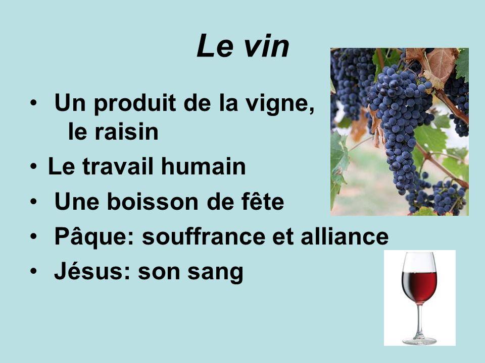 Le vin Un produit de la vigne, le raisin Le travail humain Une boisson de fête Pâque: souffrance et alliance Jésus: son sang