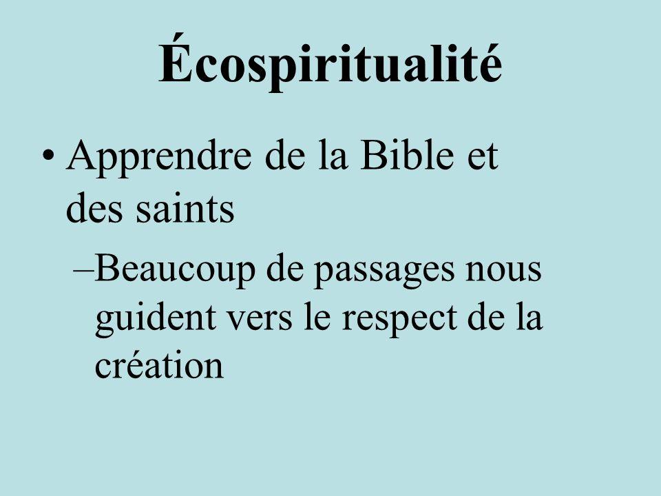 Écospiritualité Apprendre de la Bible et des saints –Beaucoup de passages nous guident vers le respect de la création
