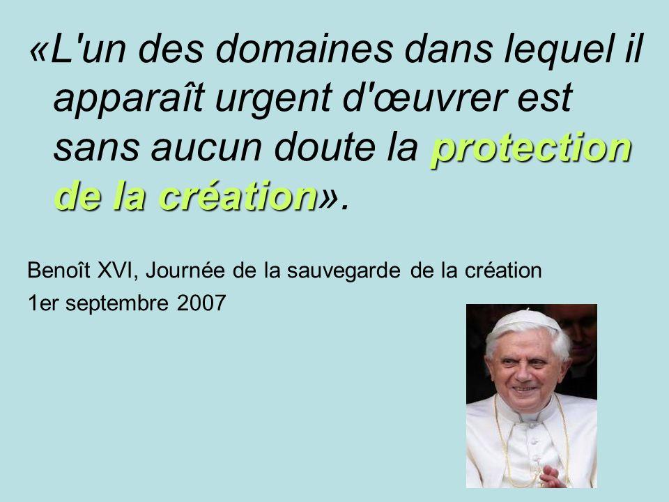 protection de la création «L un des domaines dans lequel il apparaît urgent d œuvrer est sans aucun doute la protection de la création».