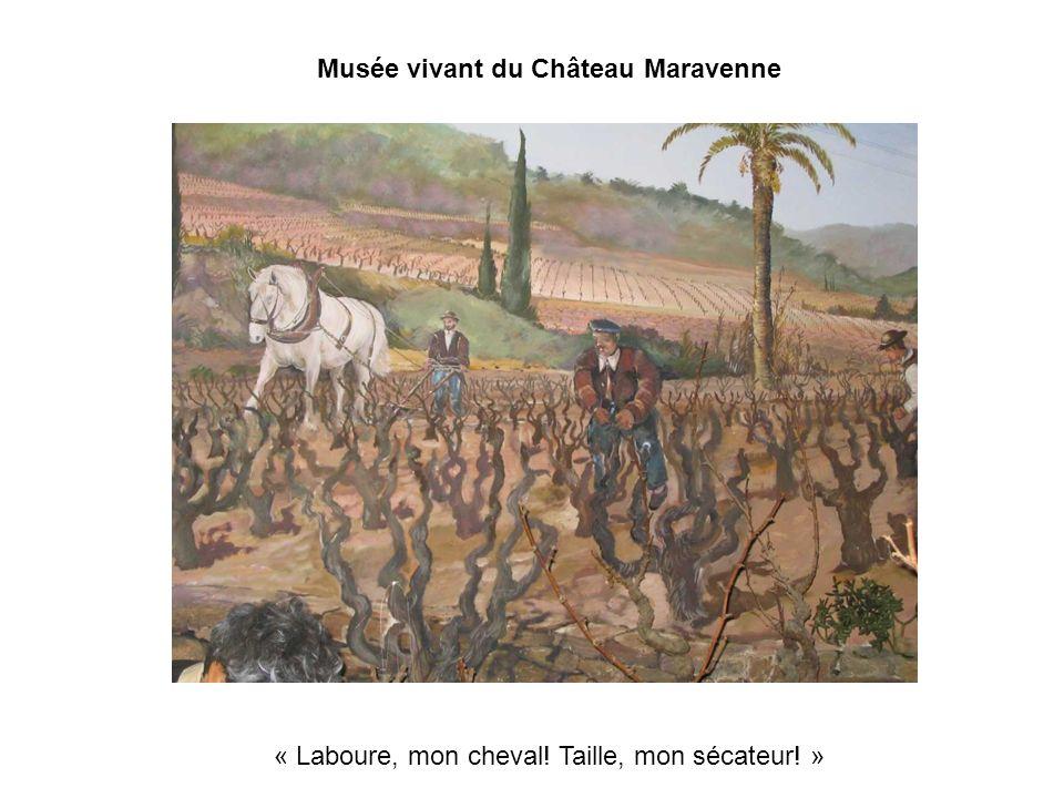 Musée vivant du Château Maravenne « Laboure, mon cheval! Taille, mon sécateur! »