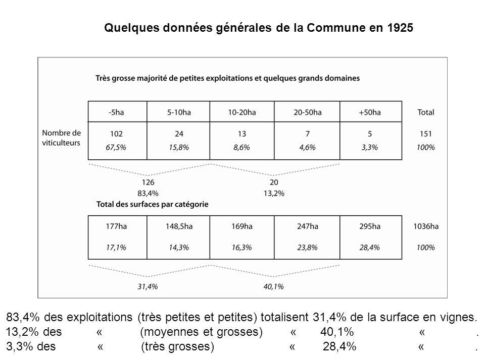 83,4% des exploitations (très petites et petites) totalisent 31,4% de la surface en vignes. 13,2% des « (moyennes et grosses) « 40,1% «. 3,3% des « (t