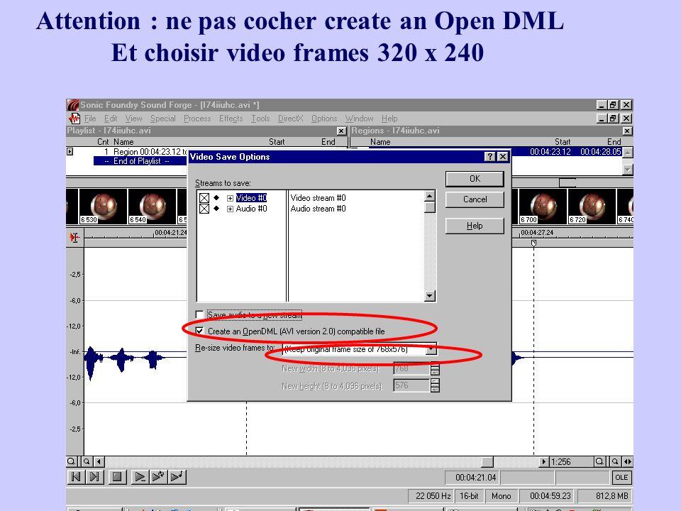 Patricia Basset22 Attention : ne pas cocher create an Open DML Et choisir video frames 320 x 240