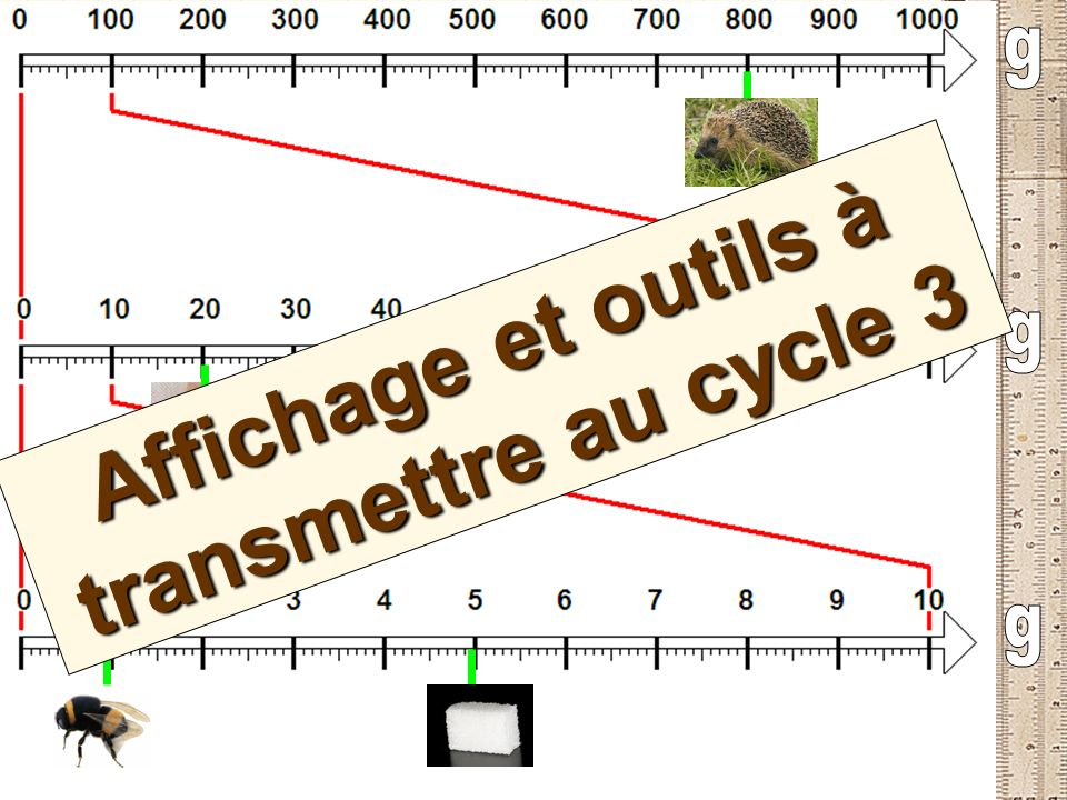 Affichage et outils à transmettre au cycle 3