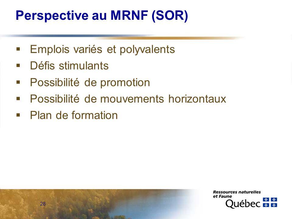 28 Perspective au MRNF (SOR) Emplois variés et polyvalents Défis stimulants Possibilité de promotion Possibilité de mouvements horizontaux Plan de formation