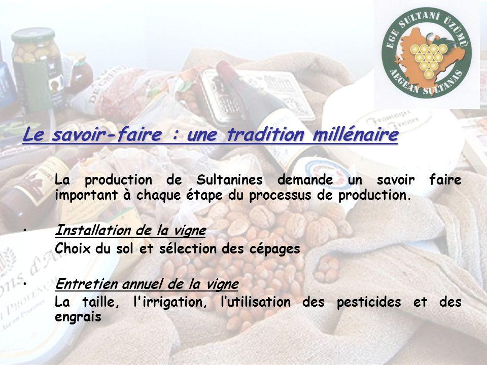 Le savoir-faire : une tradition millénaire La production de Sultanines demande un savoir faire important à chaque étape du processus de production.