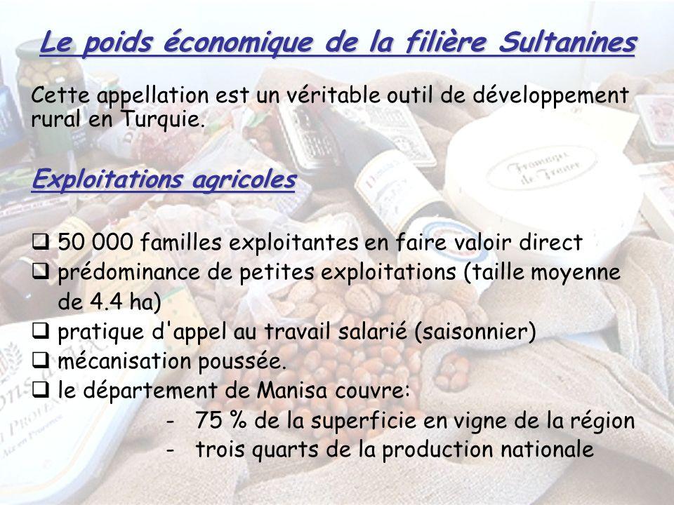 Le poids économique de la filière Sultanines Cette appellation est un véritable outil de développement rural en Turquie.