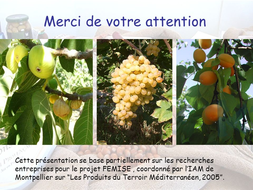Merci de votre attention Cette présentation se base partiellement sur les recherches entreprises pour le projet FEMISE, coordonné par lIAM de Montpellier sur Les Produits du Terroir Méditerranéen, 2005.