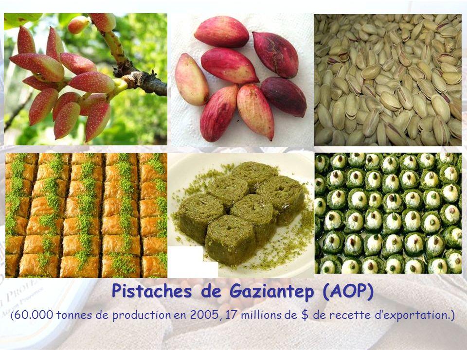 Pistaches de Gaziantep (AOP) ( 60.000 tonnes de production en 2005, 17 millions de $ de recette dexportation.)
