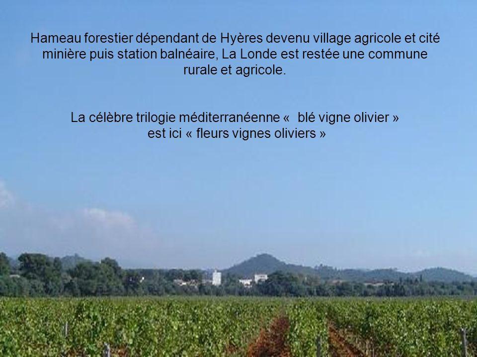 La prospérité de la mine a contribué à la formation du village et à son émancipation.