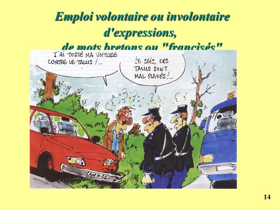 14 Emploi volontaire ou involontaire d'expressions, de mots bretons ou