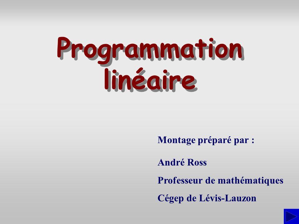 Montage préparé par : André Ross Professeur de mathématiques Cégep de Lévis-Lauzon Programmation linéaire Programmation linéaire
