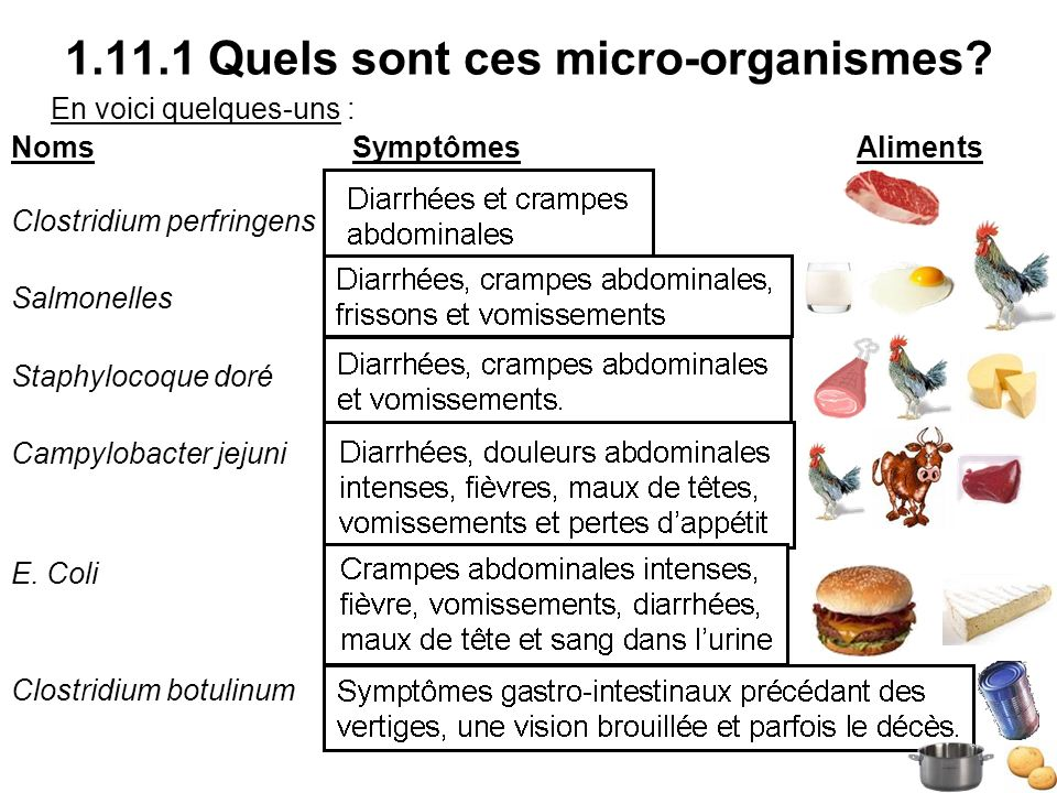 1.11.1 Quels sont ces micro-organismes? En voici quelques-uns : Noms SymptômesAliments Clostridium perfringens Salmonelles Staphylocoque doré Campylob