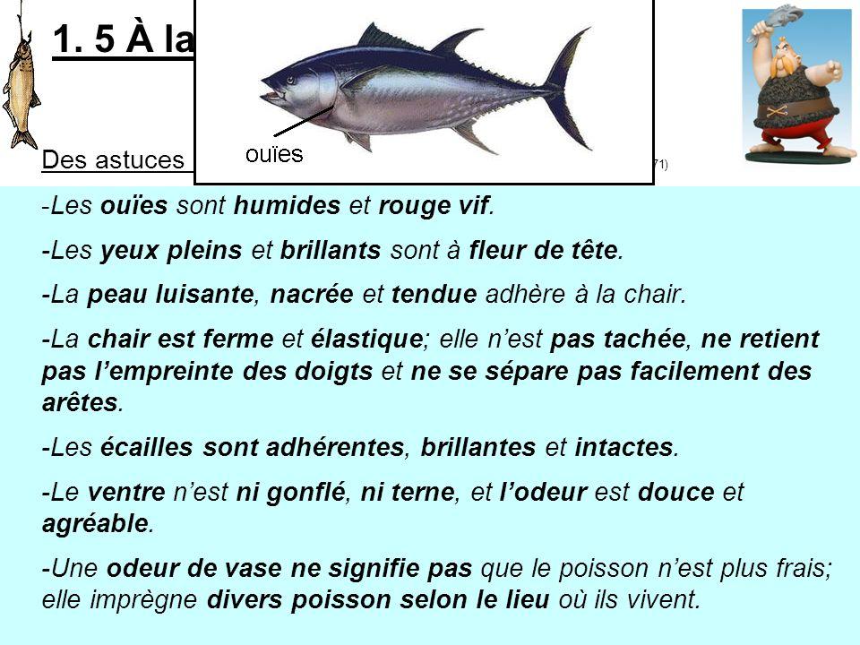1. 5 À la poissonnerie Il est frais mon poisson! Des astuces pour bien le choisir : (Lencyclopédie visuelle des aliments p.371) -Les ouïes sont humide