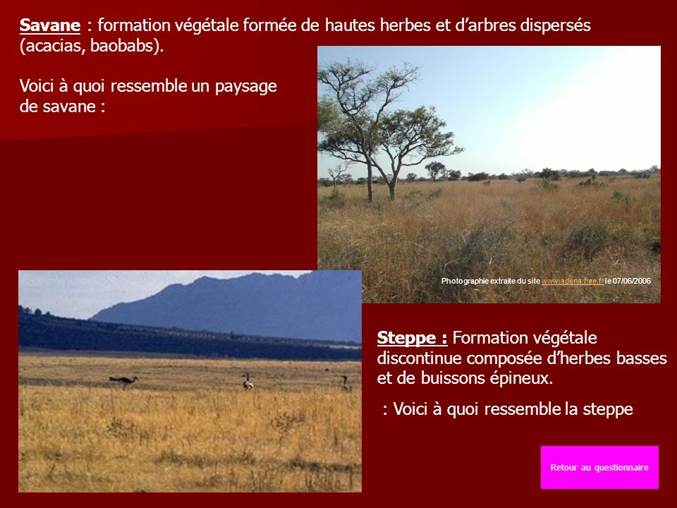 Savane : formation végétale formée de hautes herbes et darbres dispersés (acacias, baobabs).