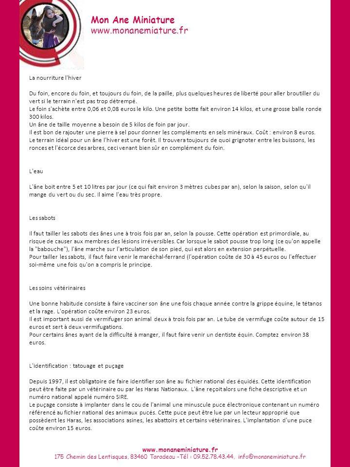 Mon Ane Miniature www.monanemiature.fr www.monaneminiature.fr 175 Chemin des Lentisques, 83460 Taradeau -Tél : 09.52.78.43.44, info@monaneminiature.fr La nourriture l hiver Du foin, encore du foin, et toujours du foin, de la paille, plus quelques heures de liberté pour aller broutiller du vert si le terrain n est pas trop détrempé.