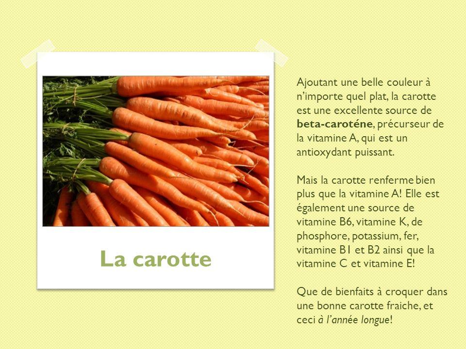 Ajoutant une belle couleur à nimporte quel plat, la carotte est une excellente source de beta-caroténe, précurseur de la vitamine A, qui est un antiox
