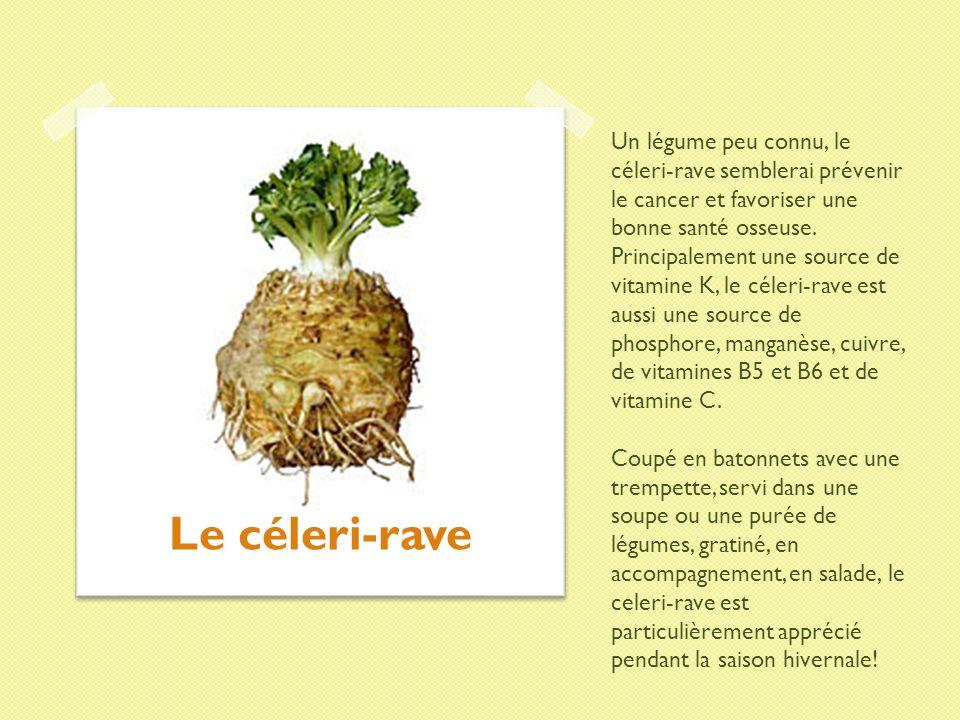 Un légume peu connu, le céleri-rave semblerai prévenir le cancer et favoriser une bonne santé osseuse. Principalement une source de vitamine K, le cél