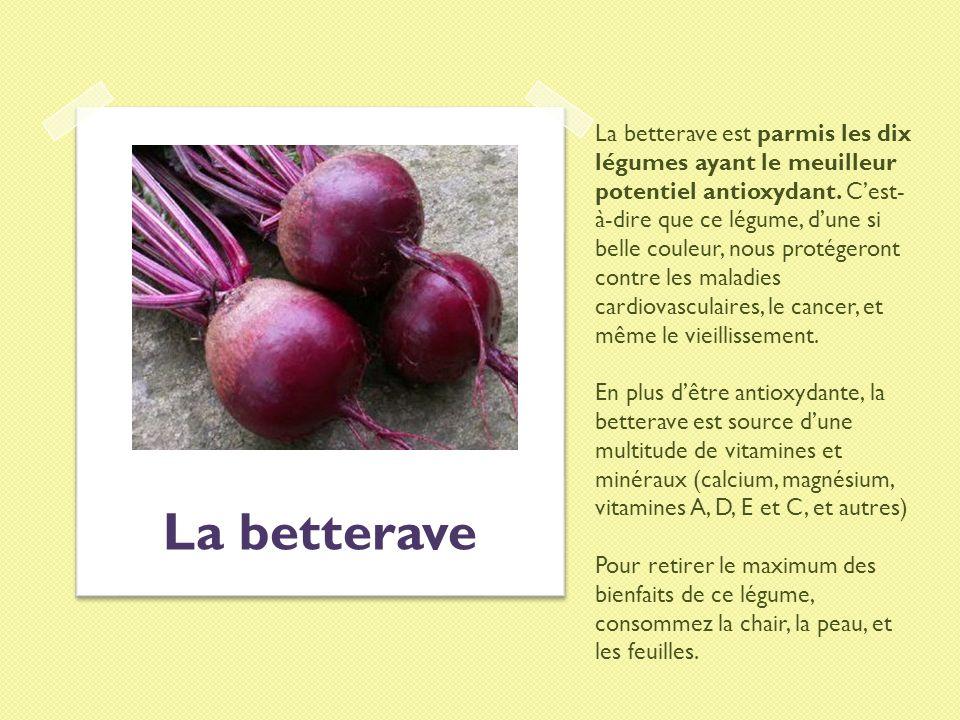 La betterave est parmis les dix légumes ayant le meuilleur potentiel antioxydant. Cest- à-dire que ce légume, dune si belle couleur, nous protégeront