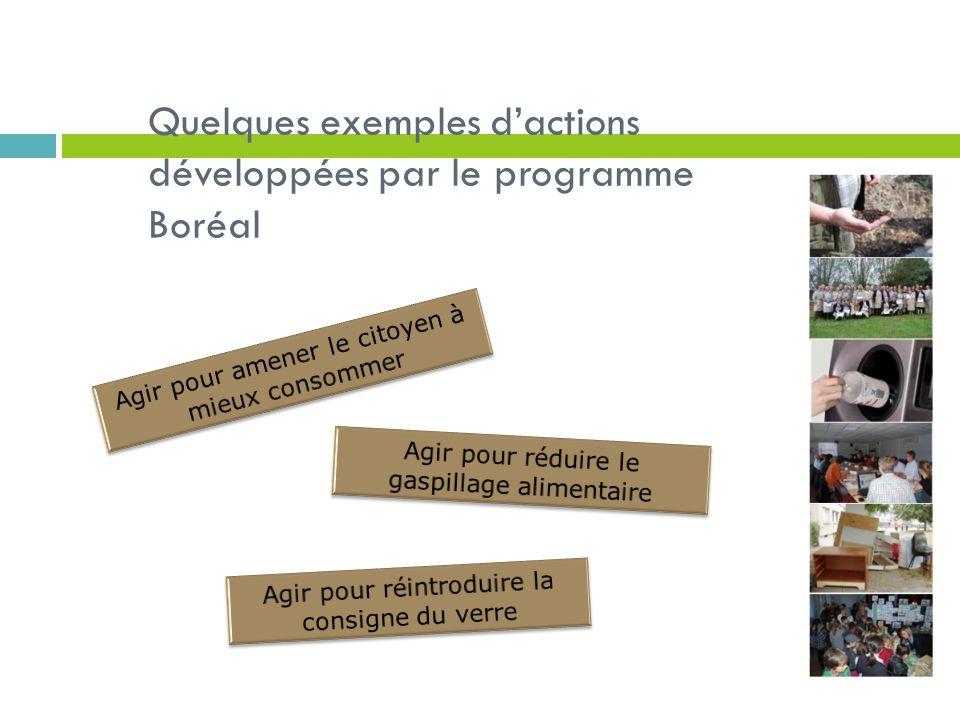Quelques exemples dactions développées par le programme Boréal