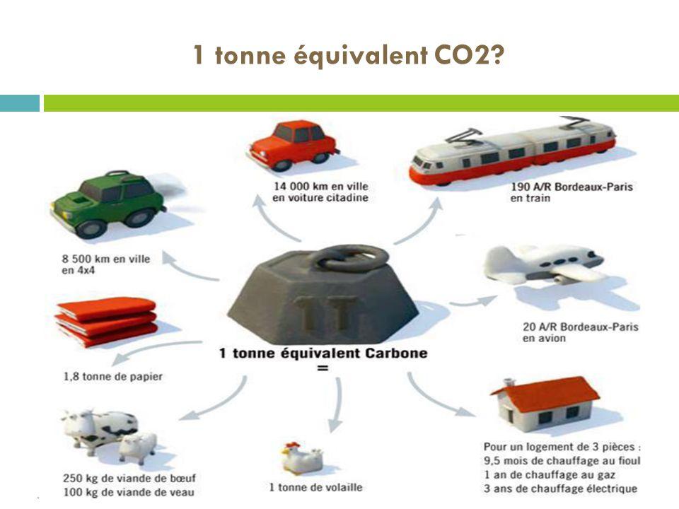1 tonne équivalent CO2?