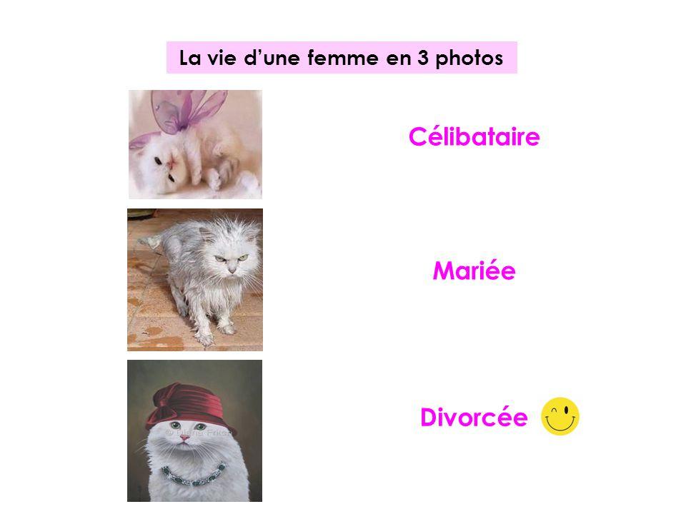 La vie dune femme en 3 photos Célibataire Mariée Divorcée