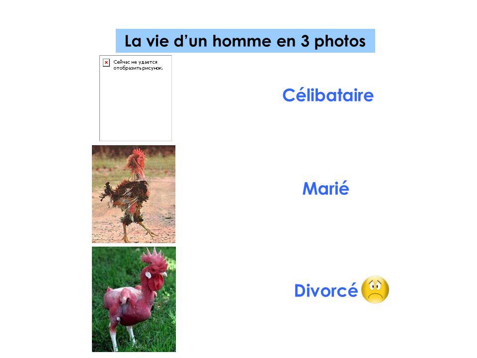 La vie dun homme en 3 photos Célibataire Marié Divorcé