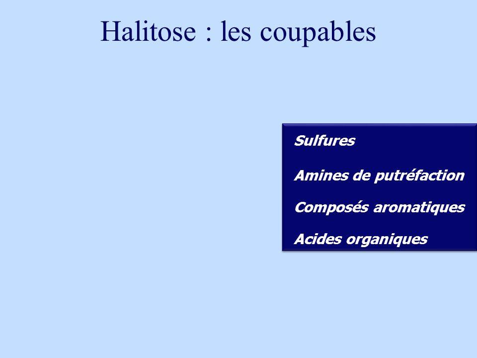 Halitose : les coupables Proteines Desquamation Débris aliments Salive Proteines Desquamation Débris aliments Salive Bactéries gram- anaérobies Bactéries gram- anaérobies Sulfures Amines de putréfaction Acides organiques Composés aromatiques putréfaction