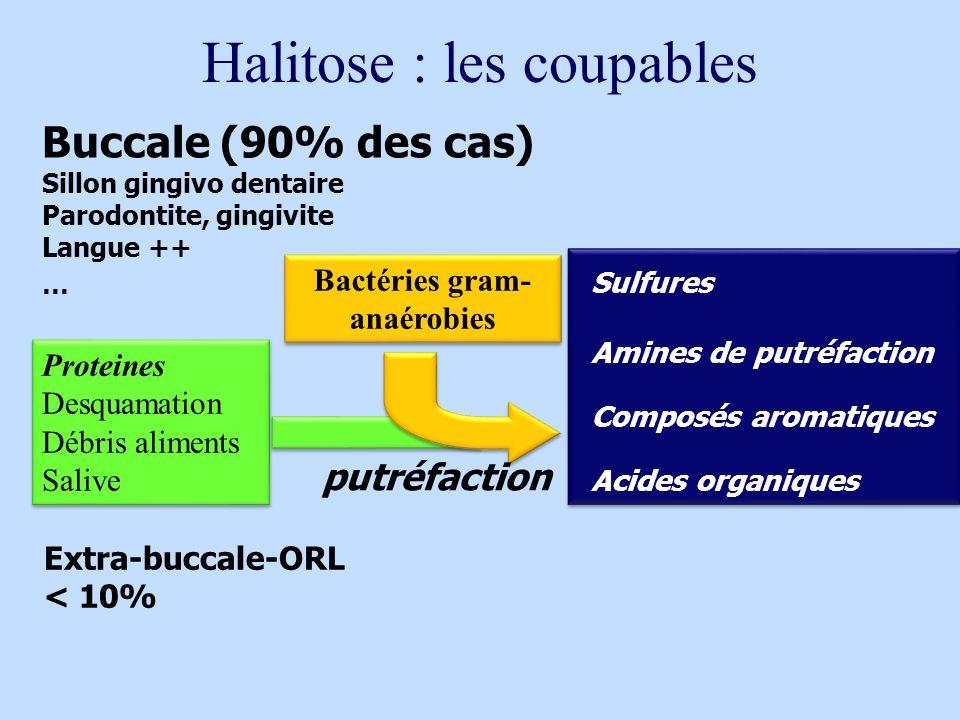 Halitose : les coupables Buccale (90% des cas) Sillon gingivo dentaire Parodontite, gingivite Langue ++ … Extra-buccale-ORL < 10% Proteines Desquamati