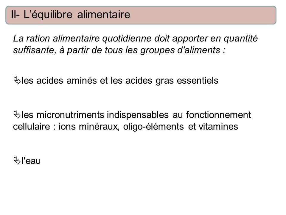 La ration alimentaire quotidienne doit apporter en quantité suffisante, à partir de tous les groupes d aliments : les acides aminés et les acides gras essentiels les micronutriments indispensables au fonctionnement cellulaire : ions minéraux, oligo-éléments et vitamines l eau II- Léquilibre alimentaire