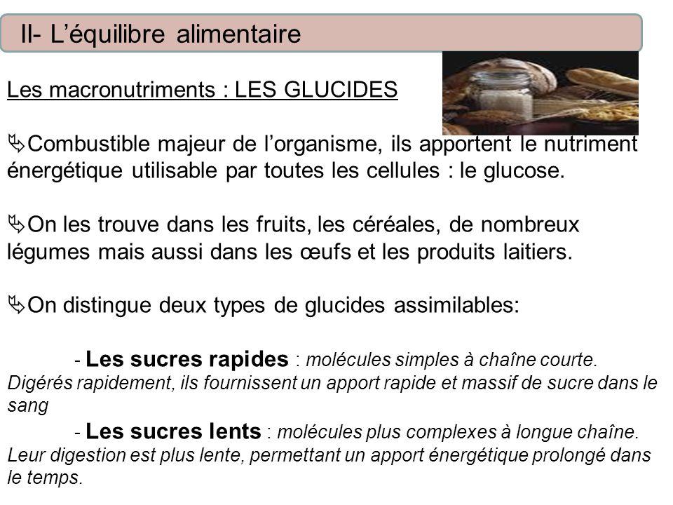 Les macronutriments : LES GLUCIDES Combustible majeur de lorganisme, ils apportent le nutriment énergétique utilisable par toutes les cellules : le glucose.