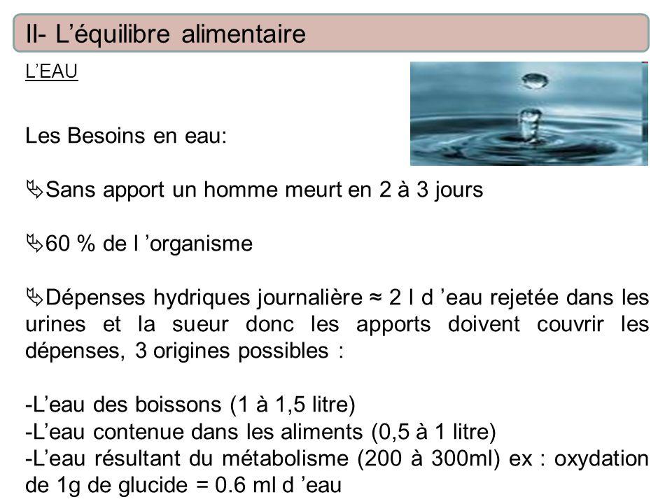 LEAU Les Besoins en eau: Sans apport un homme meurt en 2 à 3 jours 60 % de l organisme Dépenses hydriques journalière 2 l d eau rejetée dans les urines et la sueur donc les apports doivent couvrir les dépenses, 3 origines possibles : -Leau des boissons (1 à 1,5 litre) -Leau contenue dans les aliments (0,5 à 1 litre) -Leau résultant du métabolisme (200 à 300ml) ex : oxydation de 1g de glucide = 0.6 ml d eau II- Léquilibre alimentaire