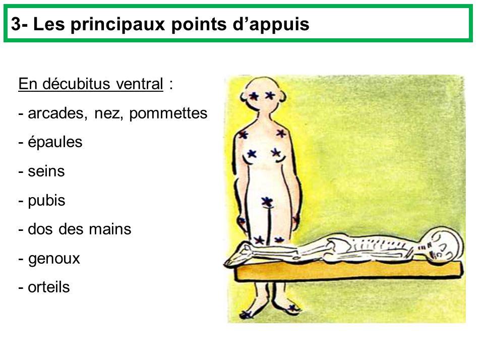 En décubitus ventral : - arcades, nez, pommettes - épaules - seins - pubis - dos des mains - genoux - orteils 3- Les principaux points dappuis