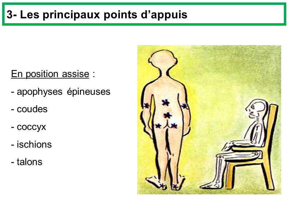 En position assise : - apophyses épineuses - coudes - coccyx - ischions - talons 3- Les principaux points dappuis