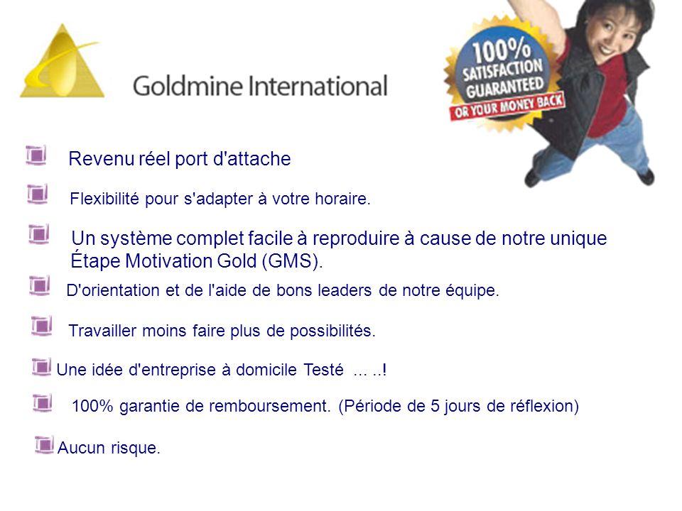 PLAN DOR 3 / 3 AVANCÉ Goldmine International