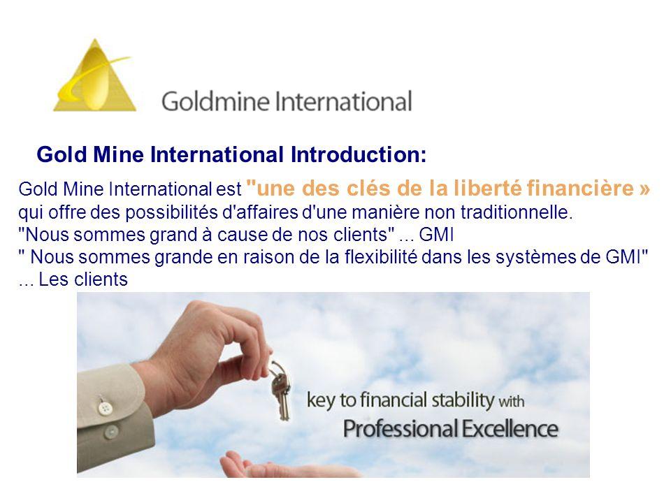 GOLD MINE INTERNATIONAL commencé leur opération de marketing de réseau en provenance de Norvège sous le numéro 981 447 999 en 2000.