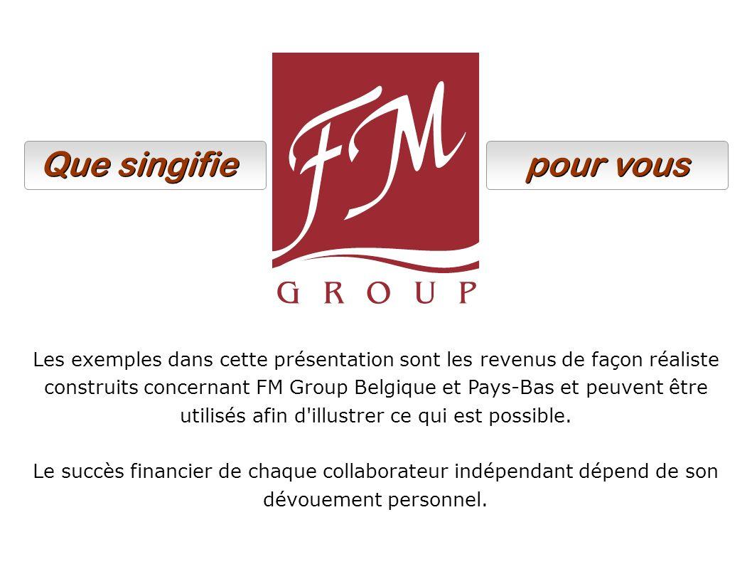 Les exemples dans cette présentation sont les revenus de façon réaliste construits concernant FM Group Belgique et Pays-Bas et peuvent être utilisés a