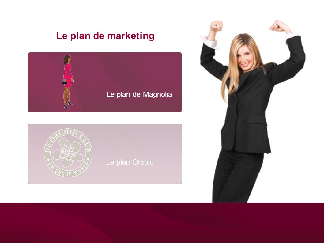 Le plan de Magnolia Le plan de marketing Le plan Orchid