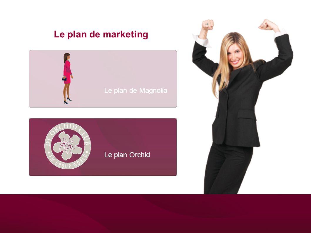 Le plan Orchid Het Magnolia Plan Le plan de marketing Le plan de Magnolia