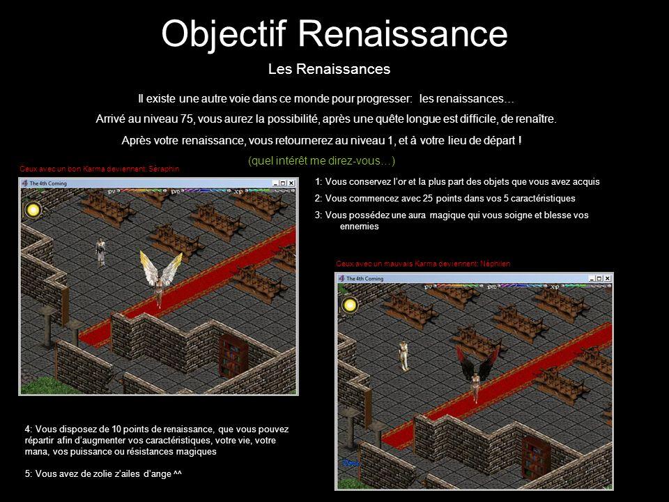 Objectif Renaissance Les Renaissances Il existe une autre voie dans ce monde pour progresser: les renaissances… Arrivé au niveau 75, vous aurez la pos